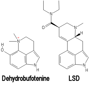 Dehydrobufotenine_and_LSD.png